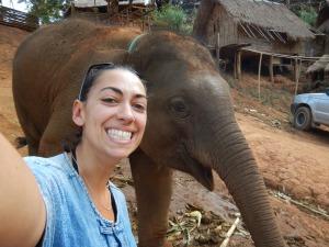 baby éléphant au regard pas très réveillé mais à la frappe puissante